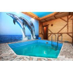 Сауна Дельфин